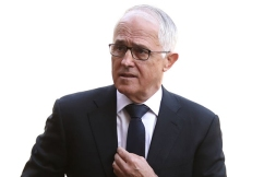 Independent Upper Hunter candidate admits Turnbull's support 'a risk'